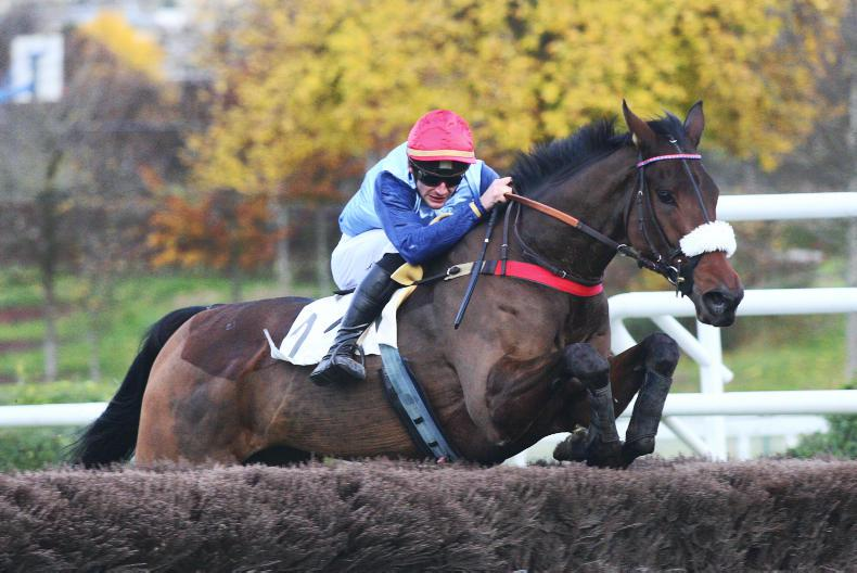 BREEDING INSIGHTS: Fabulous victory in AQPS Grade 1