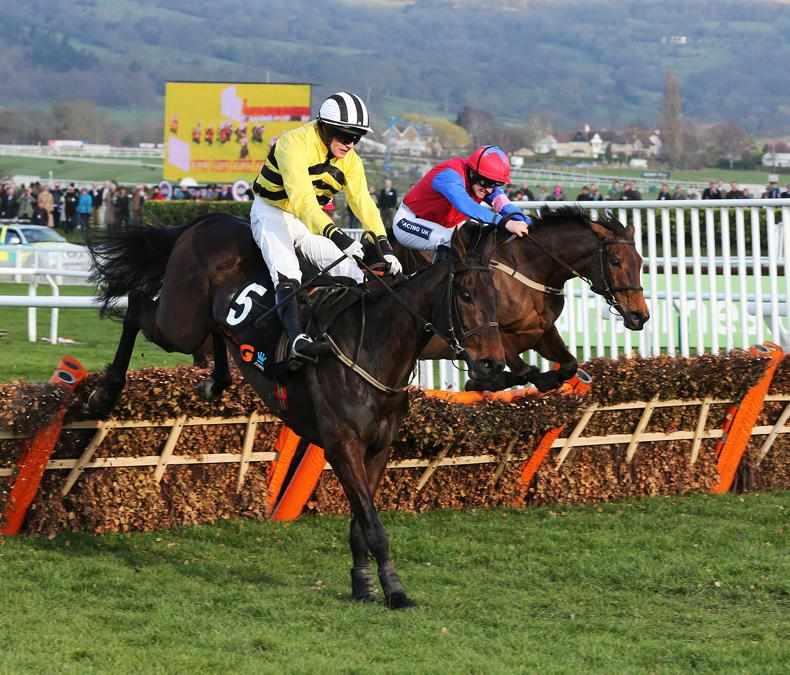 SALES: Treasure trove of jumps talent at Kill