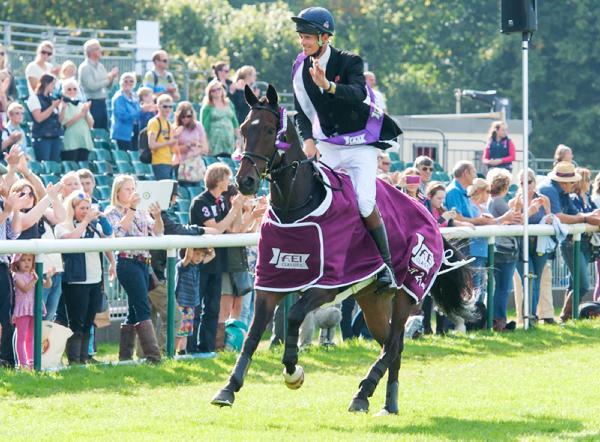 Irish-breds star in British rankings