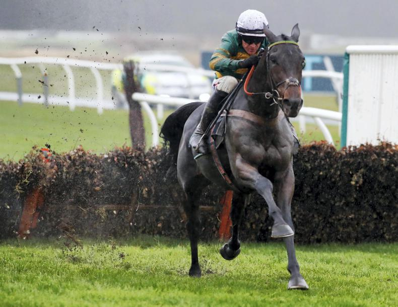 TIME WILL TELL: Buveur d'Air lights up at Newcastle
