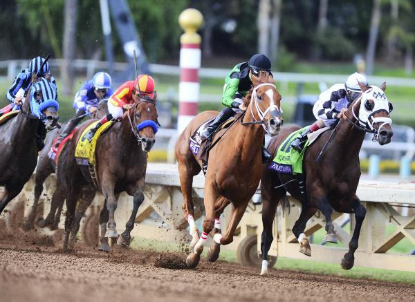 BREEDERS CUP:  Work All Week earns reward