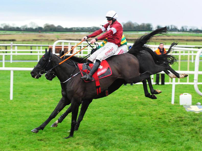 FAIRYHOUSE SUNDAY: Gutsy win for Delta Work