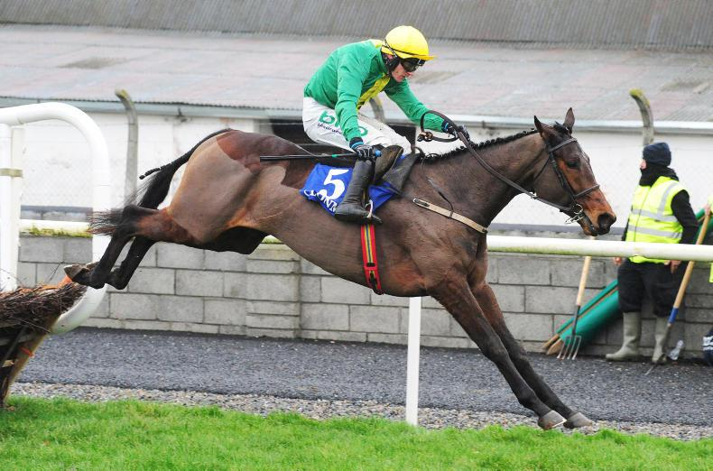 Scarpeta too sharp for Clonmel rivals on hurdles return