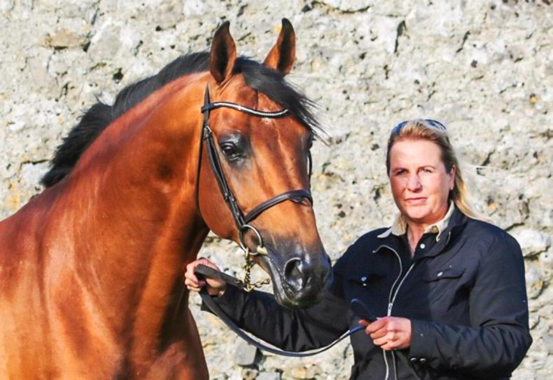 THE OWNER: Andrea Etter -  breeding winners