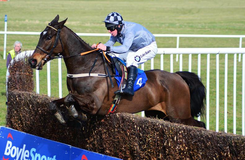 Castlegrace Paddy shines in Hilly Way Chase