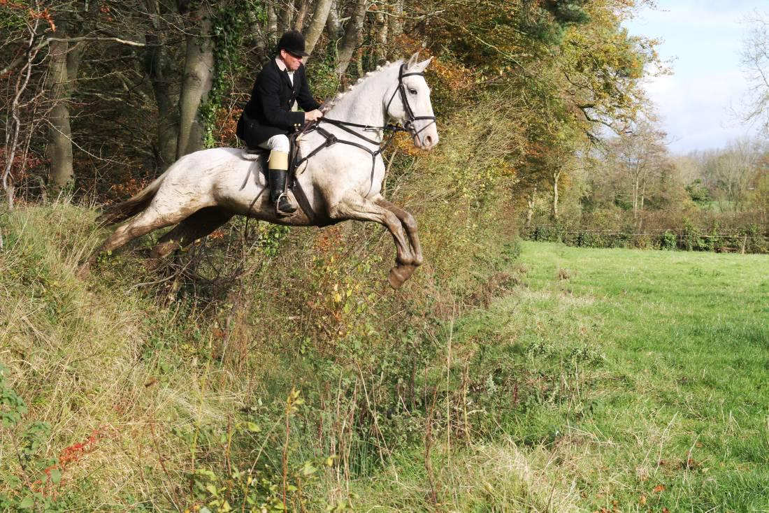 Festive air adds to top hunting