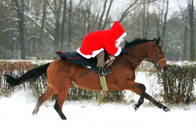 HUNTING - ON POINT:  Ballymacads hosting Christmas Children's Meet this weekend