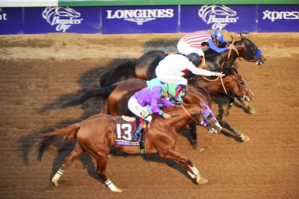 BREEDERS CUP: Bayern battles all the way to glory