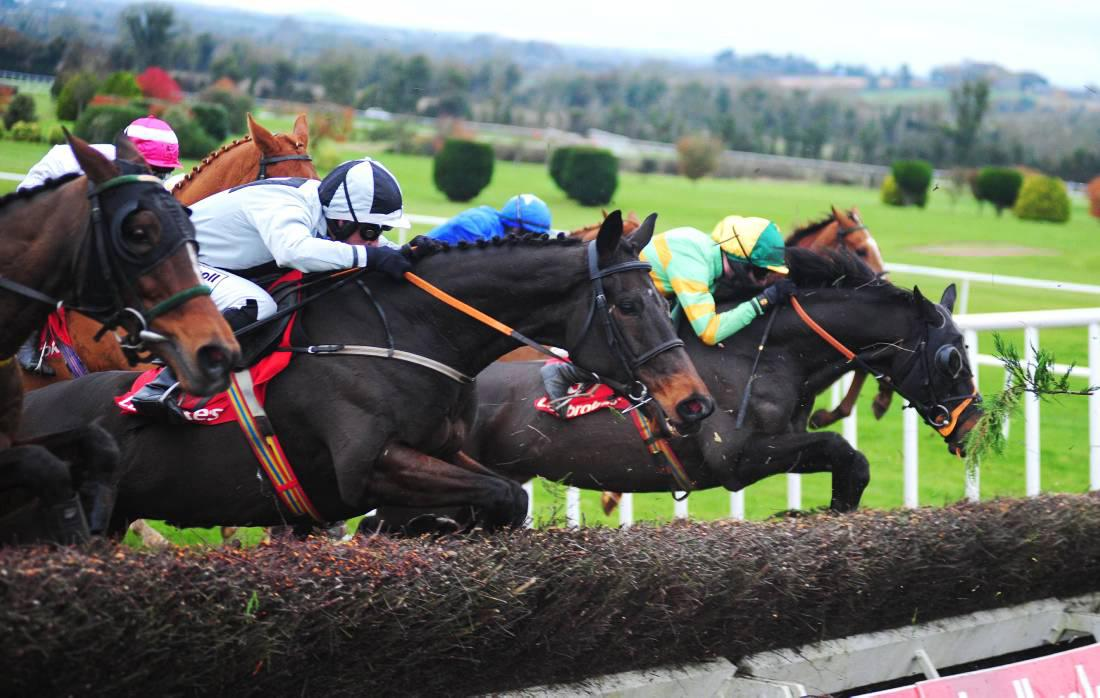 Top trainers dominate Troytown Chase entries
