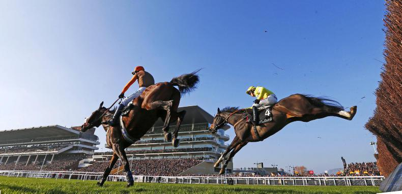Welfare changes to see field sizes cut in two-mile chases at Cheltenham