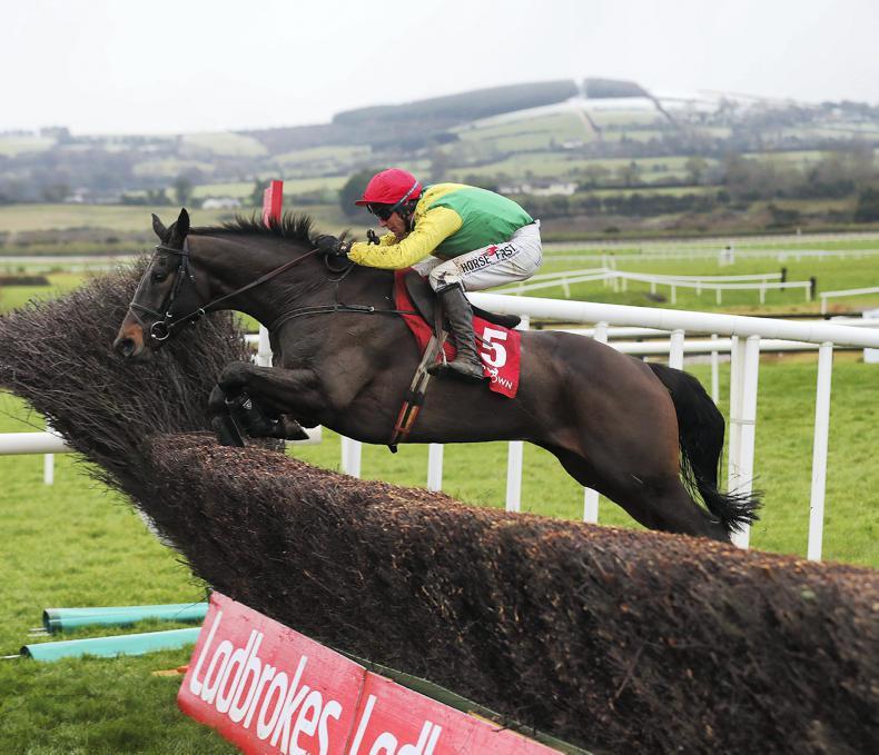 Sizing John pleases Jessica Harrington in racecourse spin