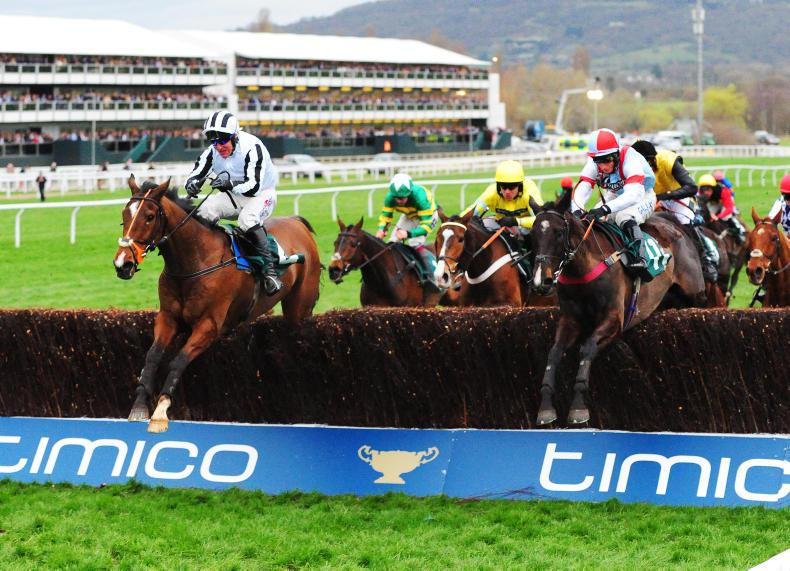 NEWS: Cheltenham to implement 17 'safety' recommendations