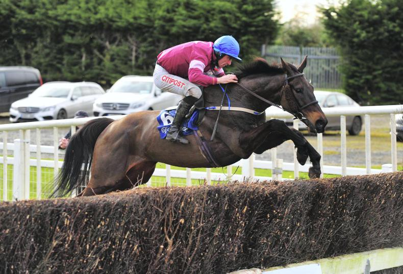EOGHÁIN WARD: Thunder And Roses among hunter chaser recruits