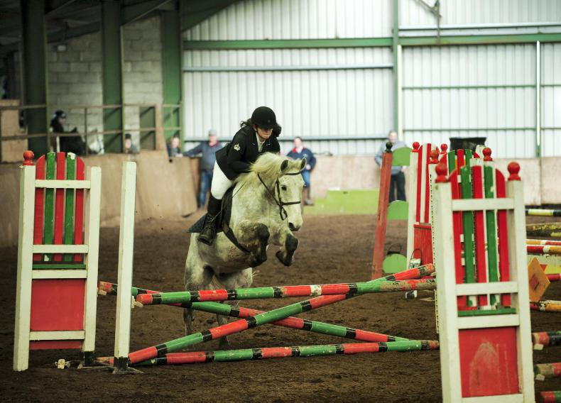 AROUND THE COUNTRY: Competitive day at CPBS Christmas Show