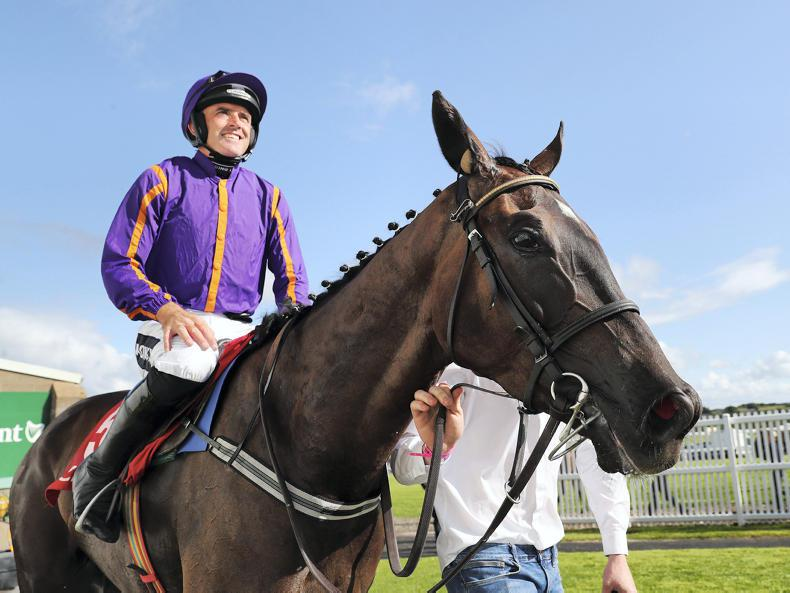 Easy Game for Willie Mullins and Ruby Walsh at Navan