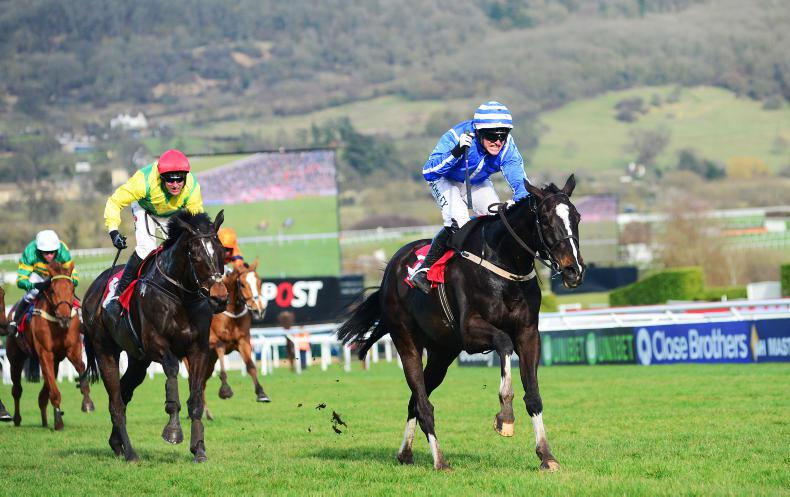 IRISH NH SEASON REVIEW: Shootout leads to record Irish total at Cheltenham