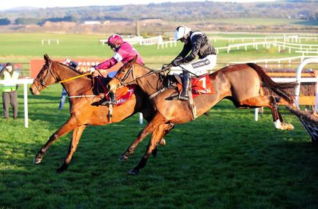 Champion Bumper heroine Relegate up and running over hurdles