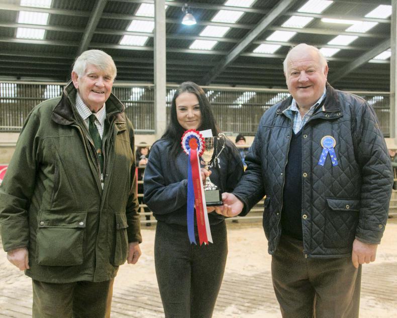 IRISH HORSE WORLD FIXTURES, DECEMBER 24th 2018