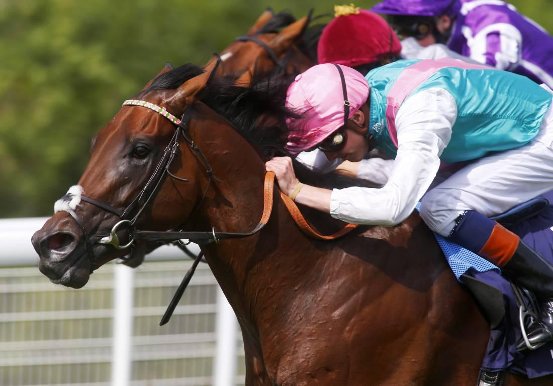 Kingman named Horse of the Year at Cartier Awards