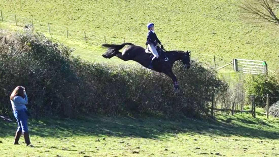 British pair in appeal for mare information