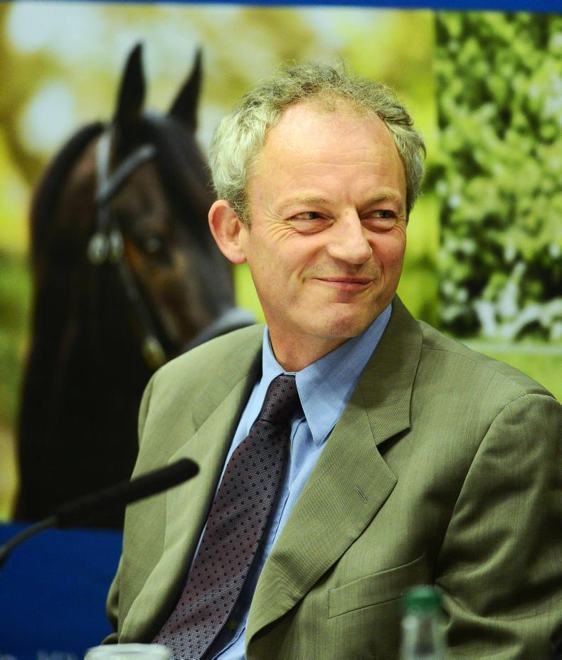BREEDING INSIGHTS: Sale star Envoi Allen now doing it at the races