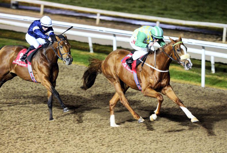 DUNDALK FRIDAY: Zain and Sky give Halford double