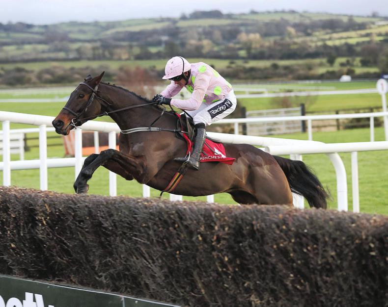 LIMERICK PREVIEW: Getabird can fly home for Ruby