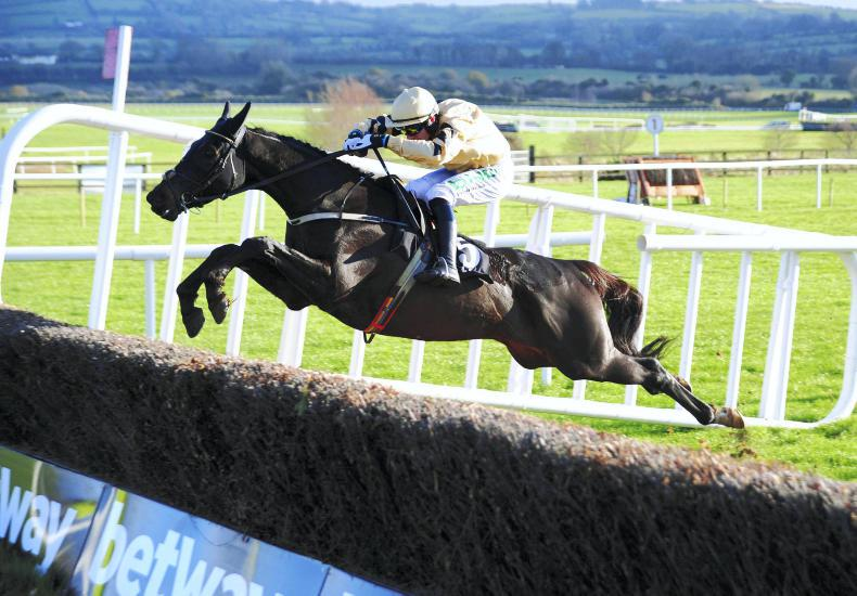 LEOPARDSTOWN: Reve up for Leopardstown with underrated Mullins chaser