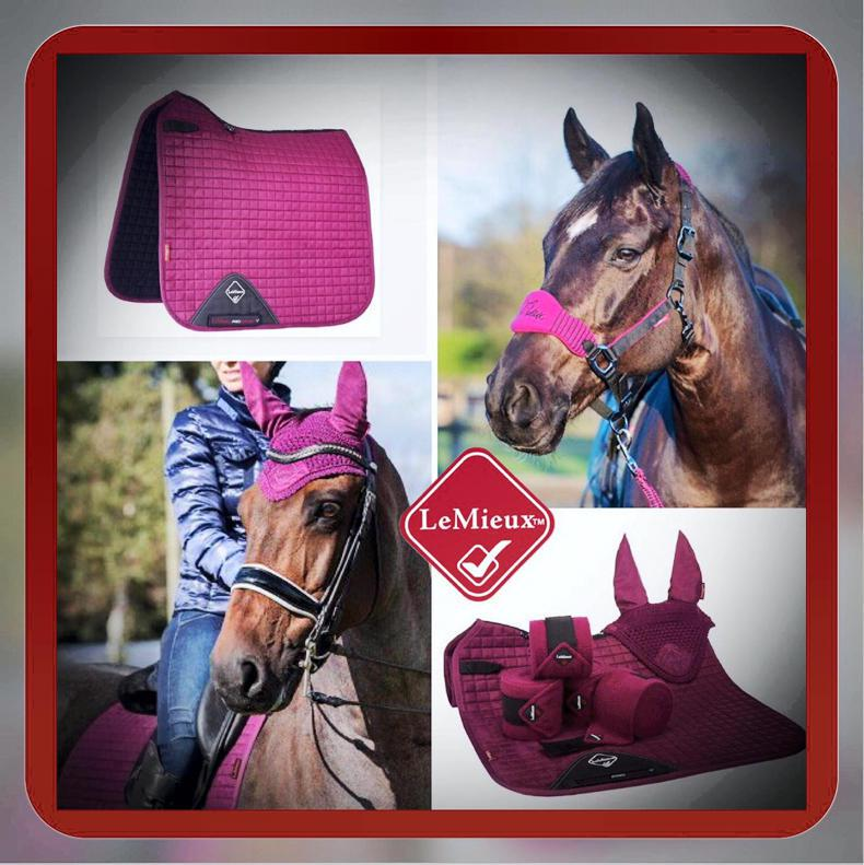 HOLMESTEAD SADDLERY COMPETITION:  Win this great Le Mieux prize