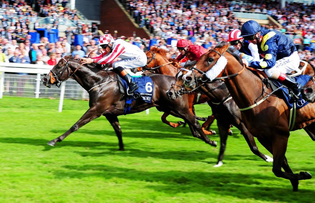 Cartier Awards: Sole Power one of three Irish winners