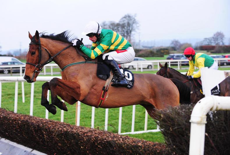 point to point the irish field