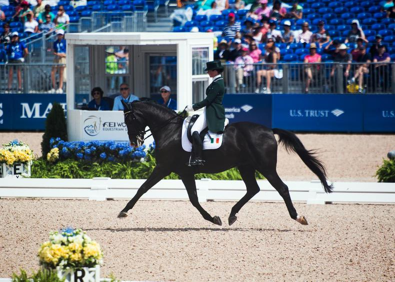 DRESSAGE REVIEW 2018:  Reynolds and Holstein dominate
