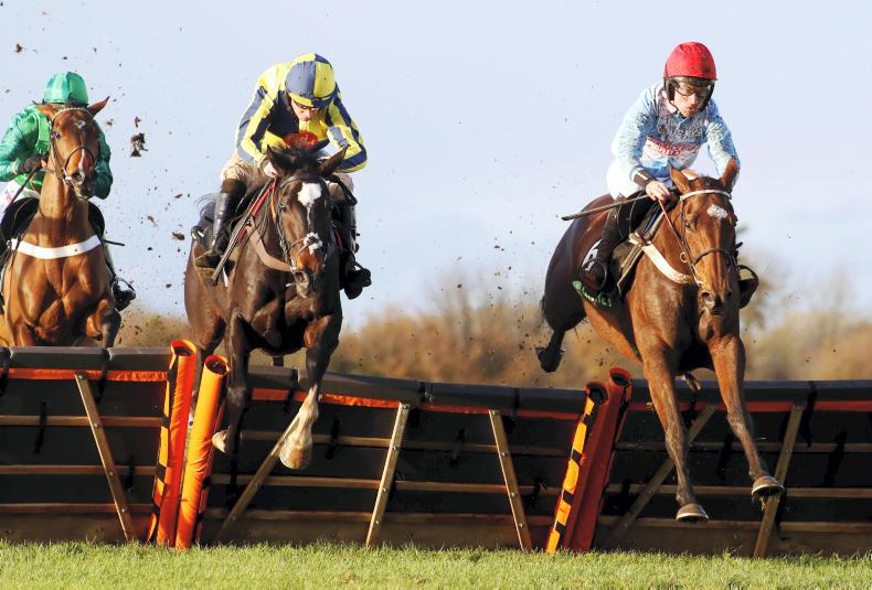 THE WEEK THAT WAS: Marvellous mares