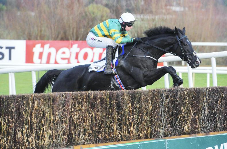 LEOPARDSTOWN ST STEPHEN'S DAY: Le Richebourg makes the grade