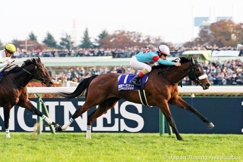 JAPAN: Almond Eye looks set to dominate
