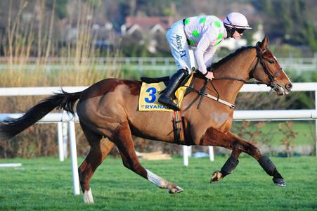 Faugheen 'sore but fine' after Christmas Hurdle fall