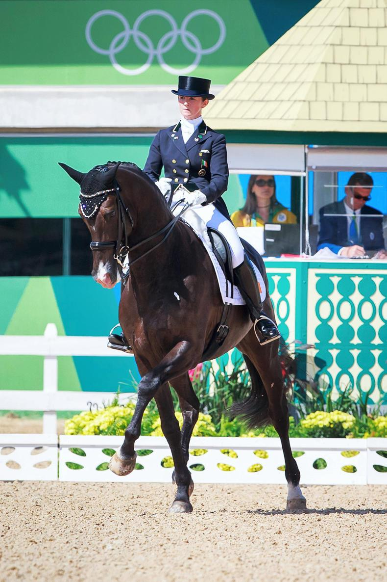 DRESSAGE: Fifth for Reynolds at Belgian World Cup