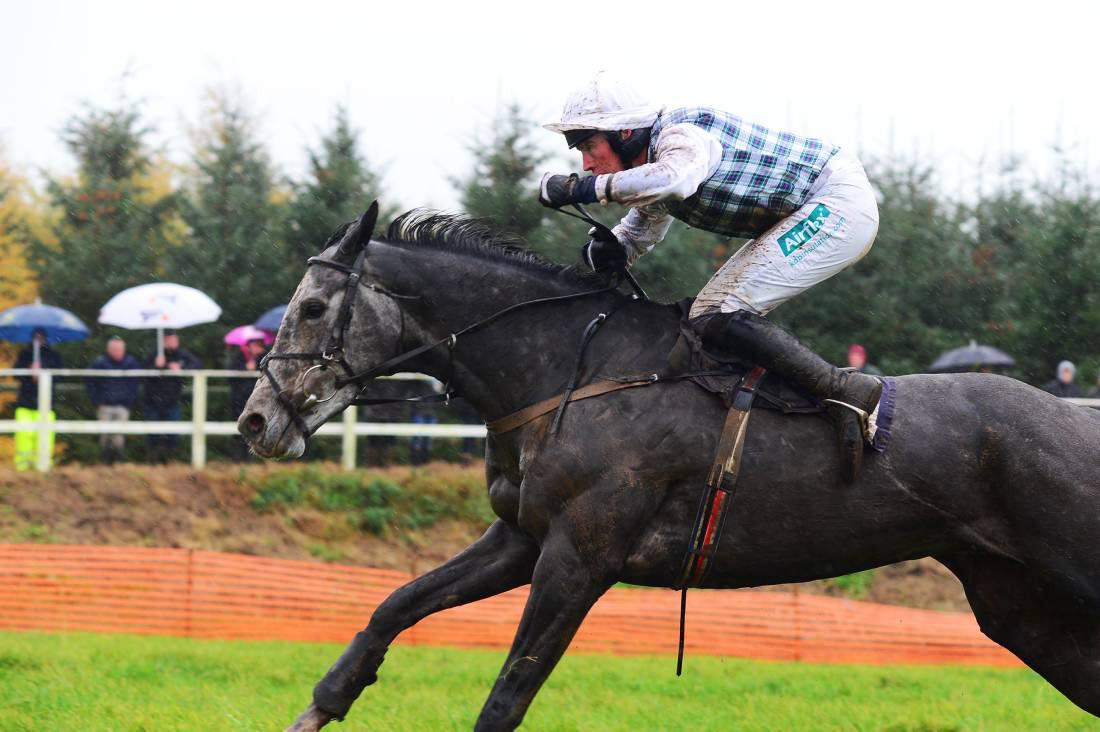 Silver Scotch joined exodus from Ireland to Cheltenham