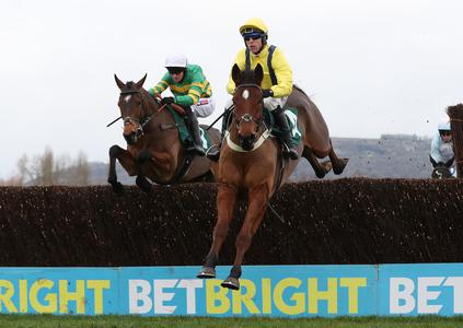 Lostintranslation hits Dipper heights at Cheltenham