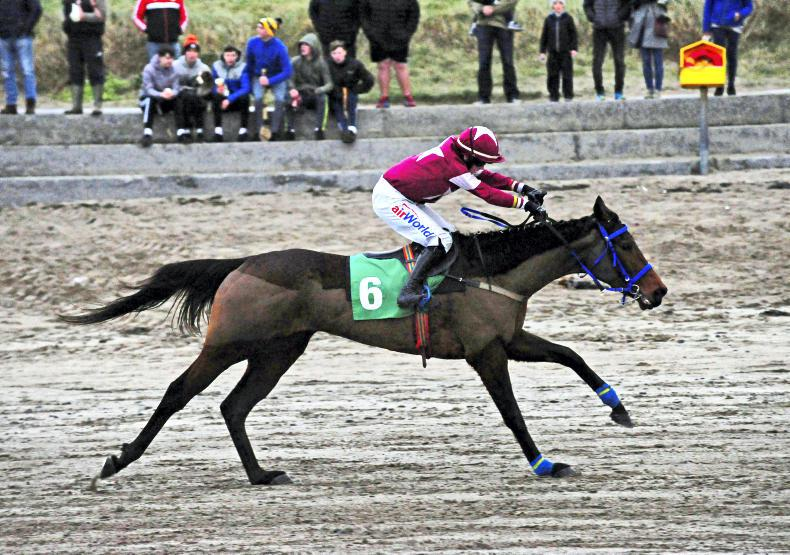PONY RACING: Ewing the Boss in Ballyheigue