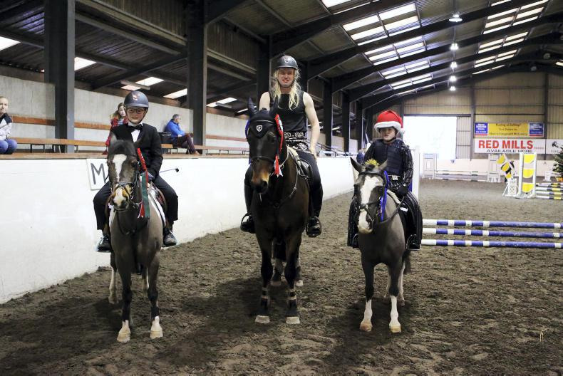 PONY TALES: Warrington Christmas Show