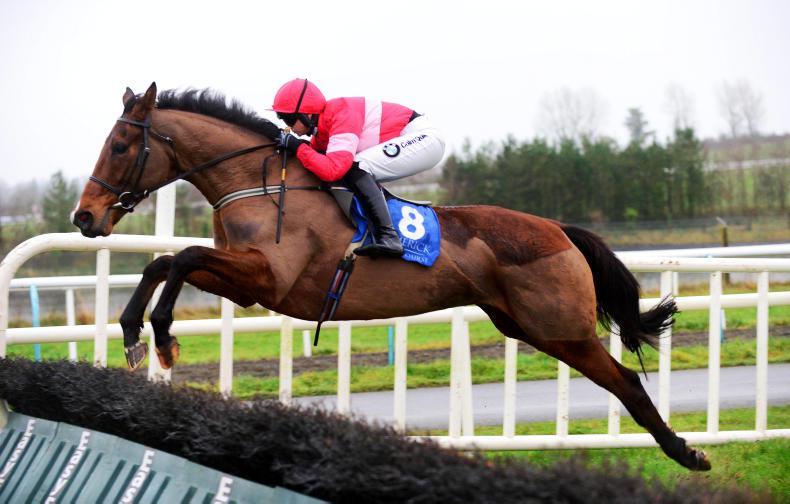 PONY TALES: Latta breds a Limerick winner