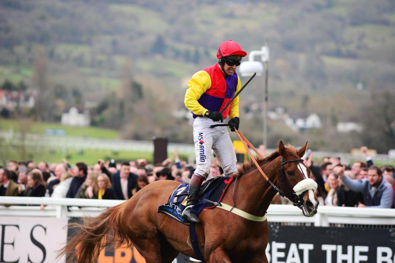 Leading contenders for the Cheltenham Gold Cup 2019