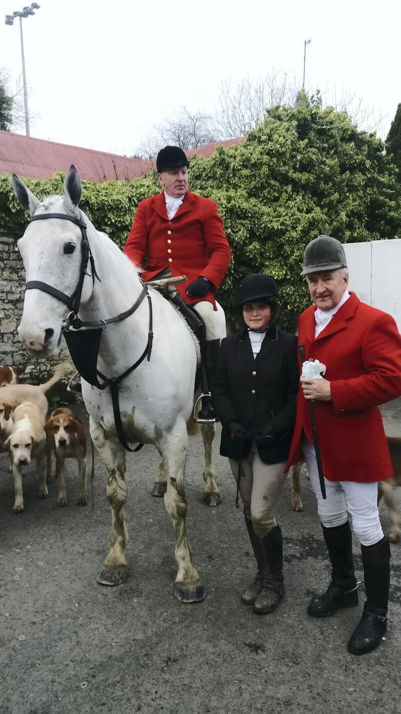 PONY TALES:  French connection for the Ward Union!