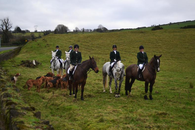 IRISH HORSE WORLD FIXTURES, JANUARY 12th 2019