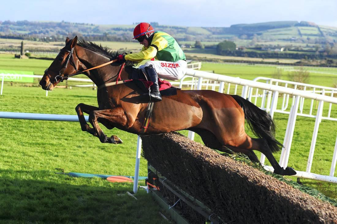 Grade 2 chase success for Shanahan's Turn