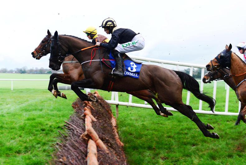 CLONMEL THURSDAY: Daybreak Boy could head to the Martin Pipe