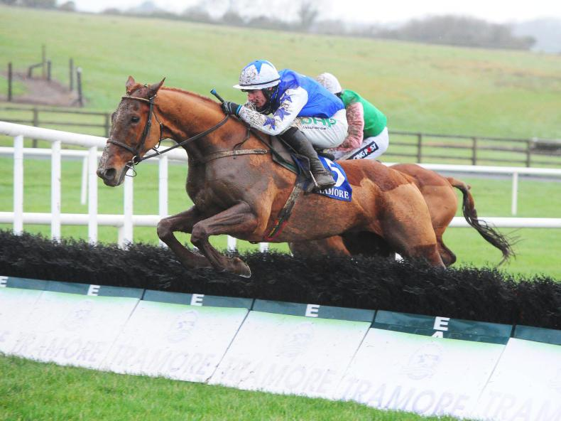 NEWS: Promising novices set to shine at Punchestown