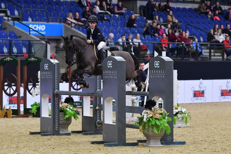 SHOW JUMPING:  Senan and Mickybo shine
