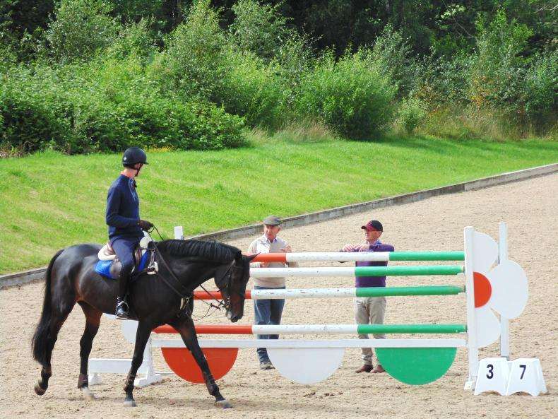 EDUCATION FEATURE 2019: Horse Sport Ireland coaching programme